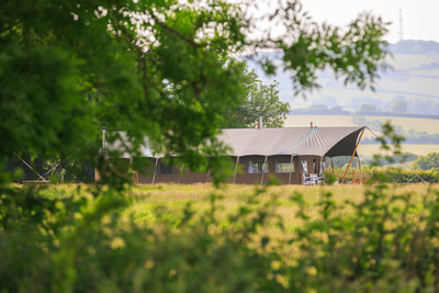 Luxury Safari Lodges in West Somerset